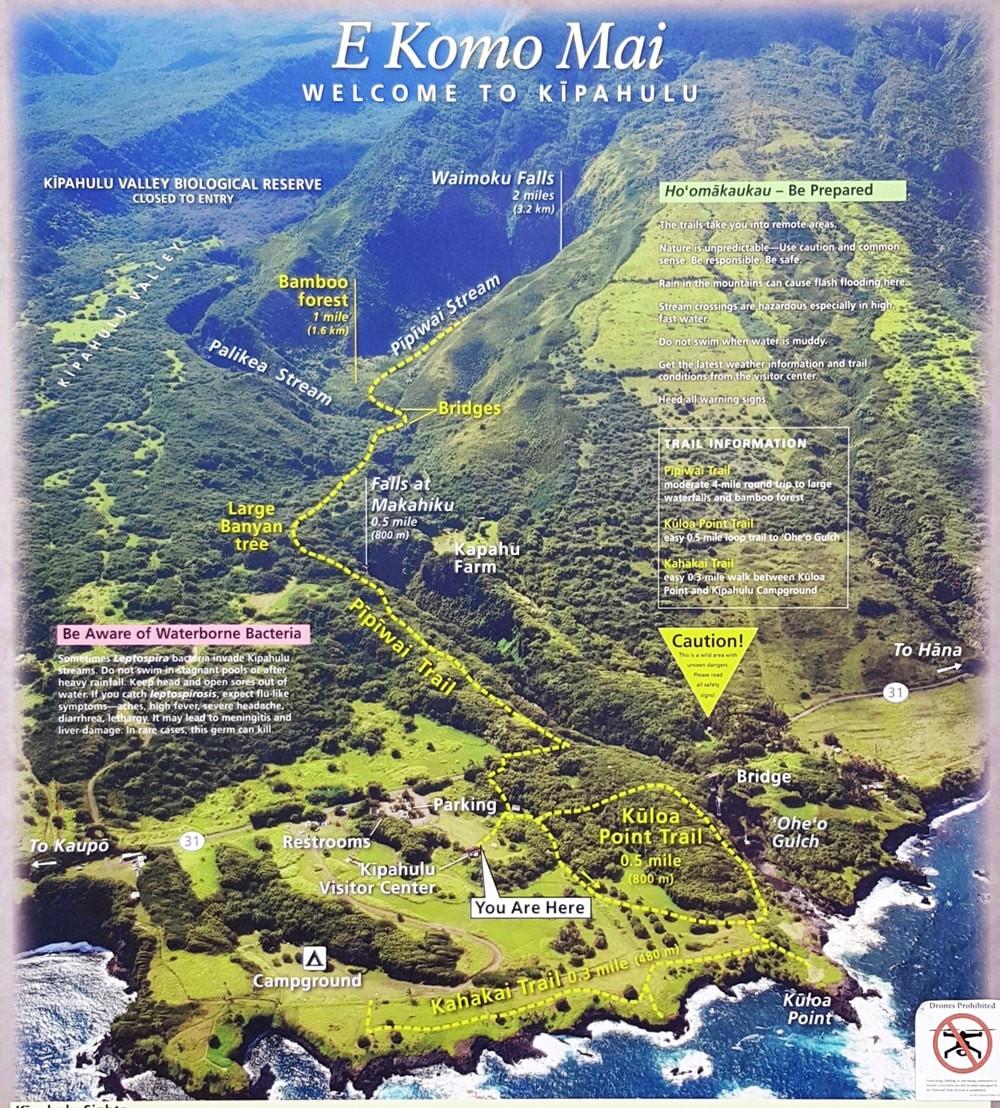 יער במבו ומפלי מים מאווי, הוואי