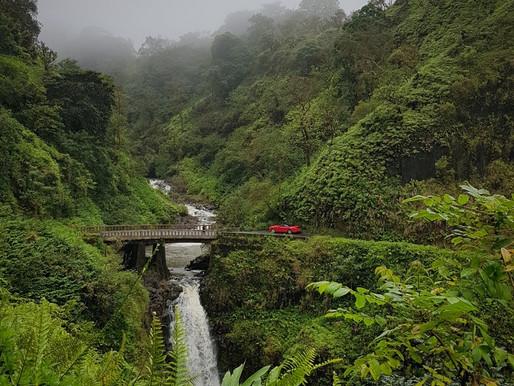יומן מסע בהוואי: הדרך להאנה, מאווי