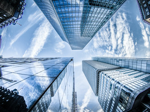 Op zoek naar de Enterprise Architect 2.0