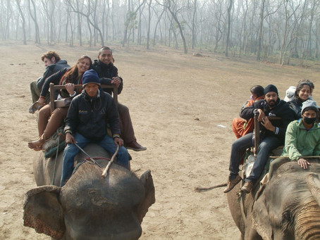 Achievements to capture in Chitwan, Nepal
