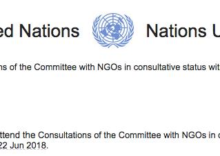 United Nations Consultation Delegate