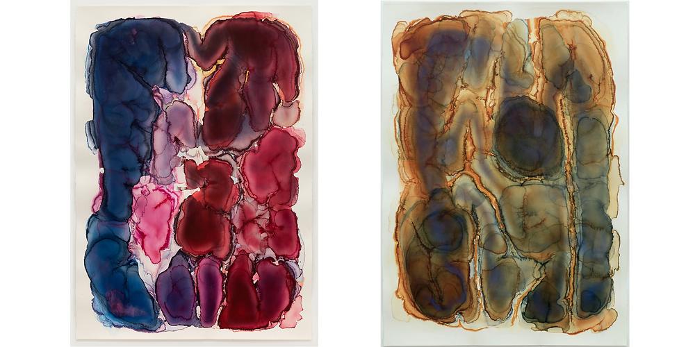 Barbara Nicholls watercolour paintings