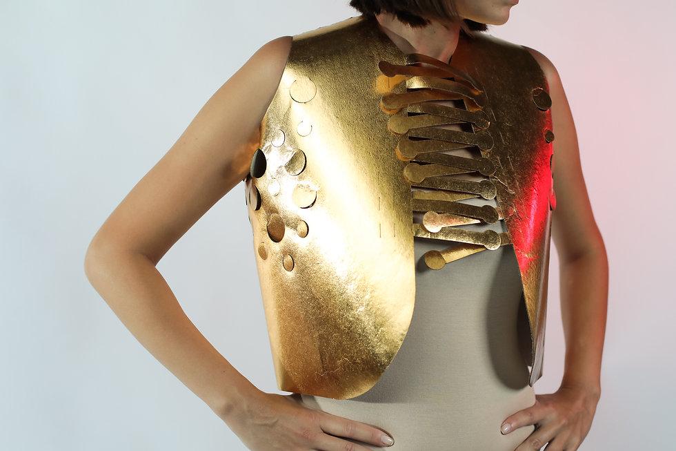golden vest