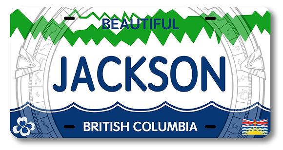 JACKSON License Plate!