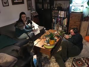 Enregistrement d'audios sous l'oeil avérti du chat