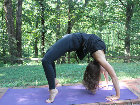 Fitness Friday: For the Love of Movement