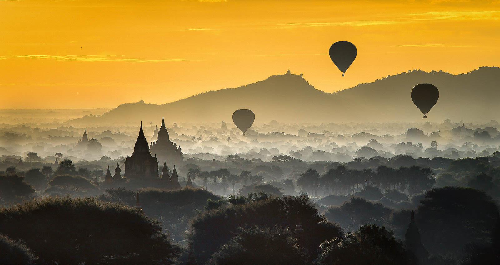 Golden dawn.jpg