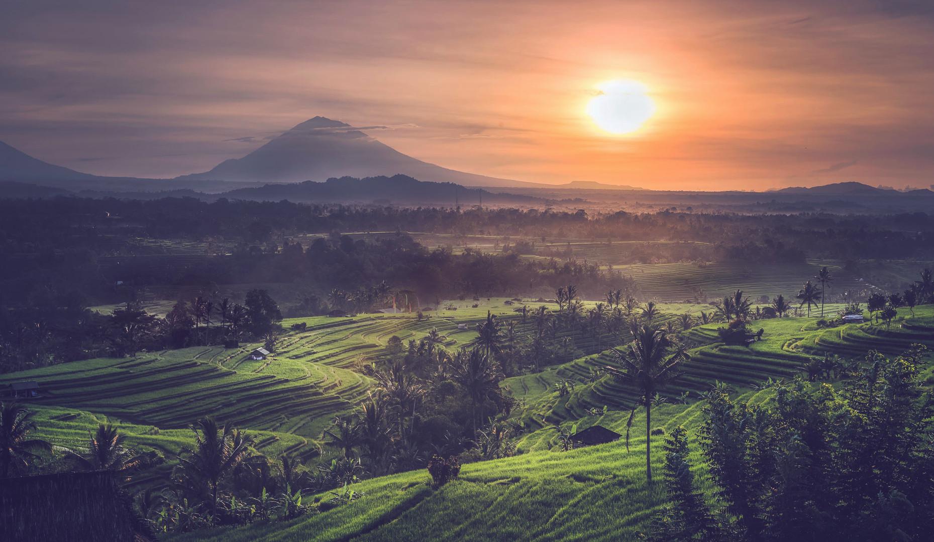 Jatiwulih sunrise Bali-2.jpg