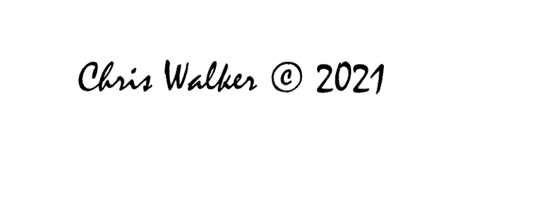 Chris Walker © 2021.png