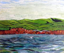 391-Devon Coast