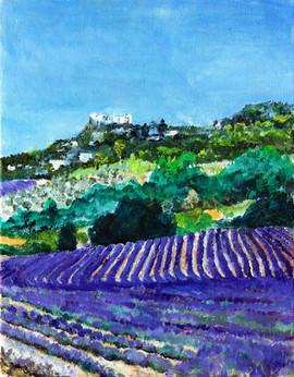 613-Chateau en Luberon