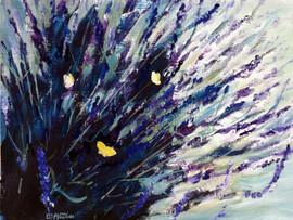 589-In the Lavender