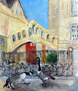 394-Rhodes' Scholars
