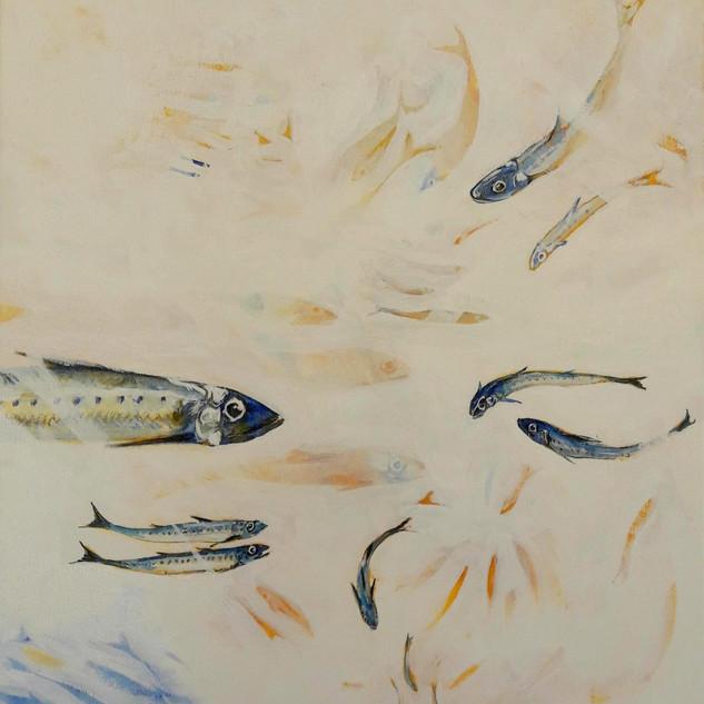 Scillier Sardines