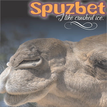 Spuzbet Ice cover 2.png