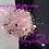 Thumbnail: Fancy *Dots Irregular Mix*