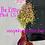 Thumbnail: The Kitty *Medium Color Shift*