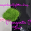 Thumbnail: Margarita Mix *Fine*