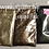 Thumbnail: Leopard Pack