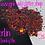Thumbnail: Merlin *Holo Chunky Mix*