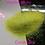Thumbnail: Glitter Slime *FINE*