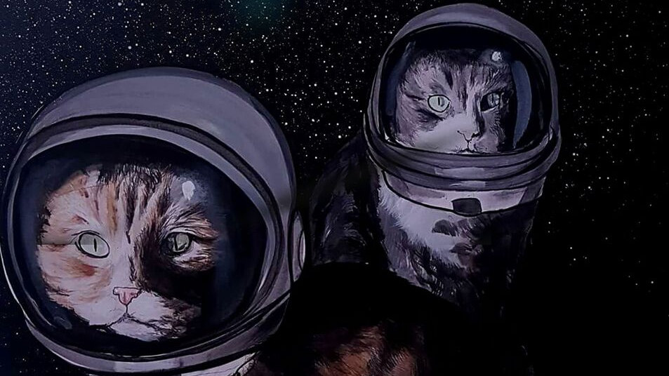 Space Cats vs U.F.O's