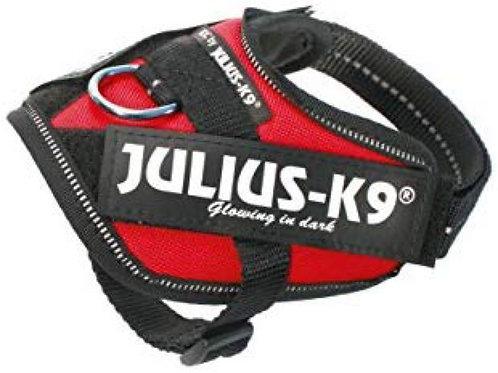 Julius-K9 IDC Powerharness in Red