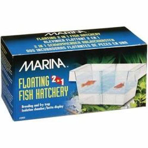 Marina Fish Hatchery