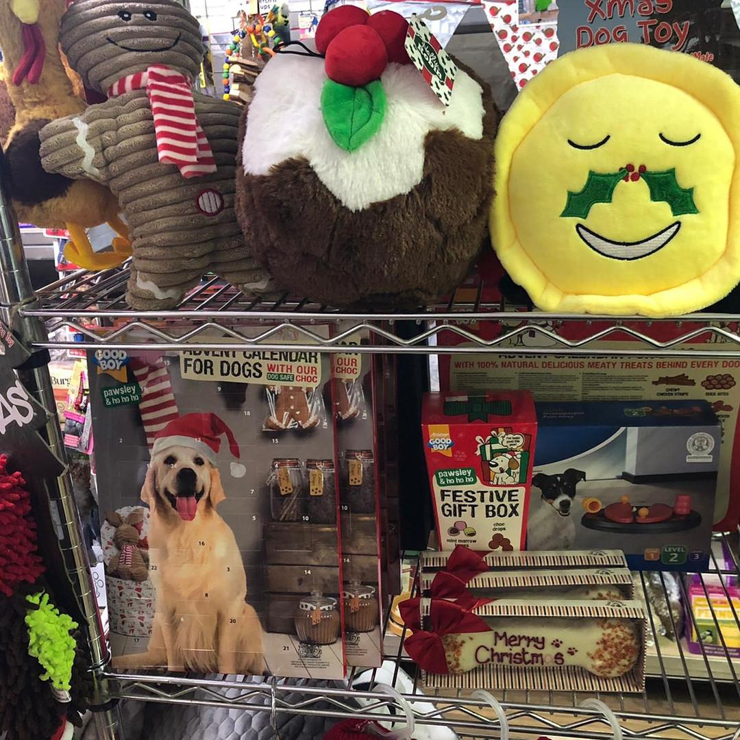 Doggie Christmas Gifts