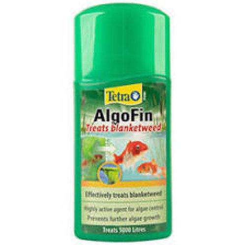 Algofin Blanketweed