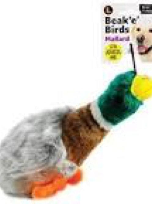 Beak n Birds Mallard
