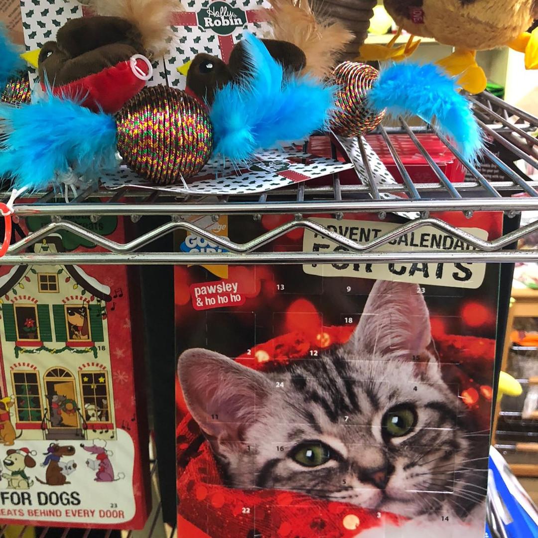 Kitty Christmas Gifts 2019