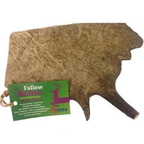 Fallow Antler