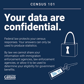 Census 101_Confidential data.png
