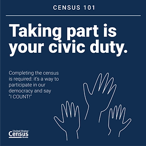 Census website info.png