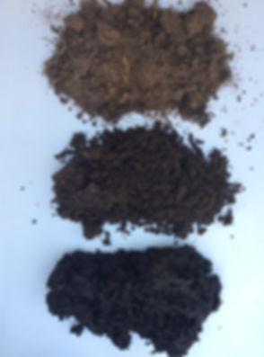 bio char blend soil rotated.jpg