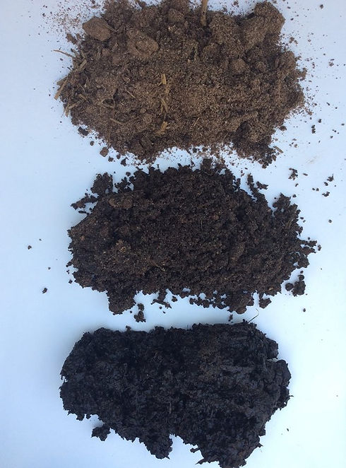 bio char blend soil rotated.jpg