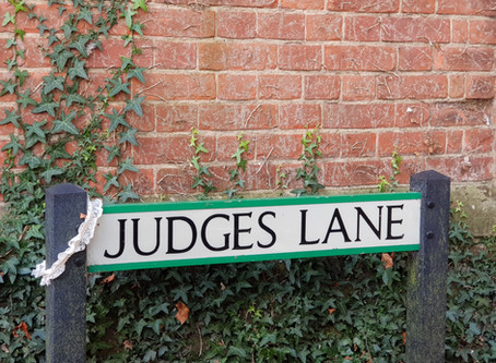 How to walk down the Judges Lane to win over the Judge..