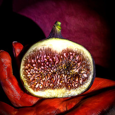 Red Hand, Half Fig