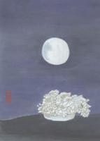 moonlight-513x720.jpg