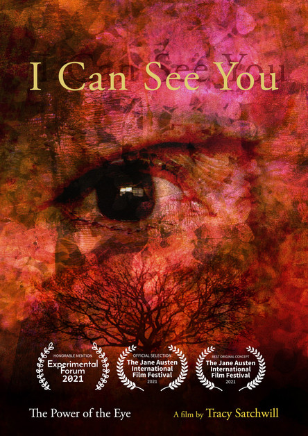 I Can See You Poster laurels.jpeg