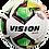 Thumbnail: Vision Evolution