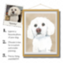 Copy of Dog Ad 1 (1).png