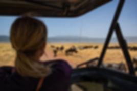 Ngorongoro1.jpg