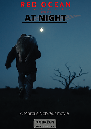 A4 poster At Night.png