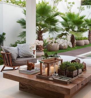 Plantas na decoração: ambientes mais bonitos e aconchegantes