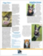 newsletterback19.jpg