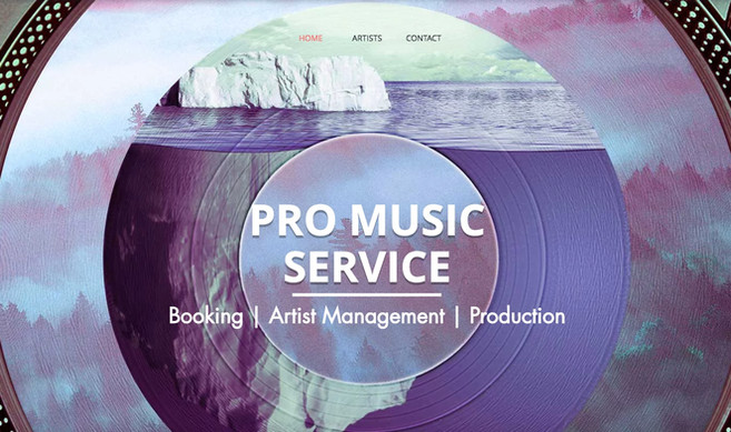 Pro Music Services