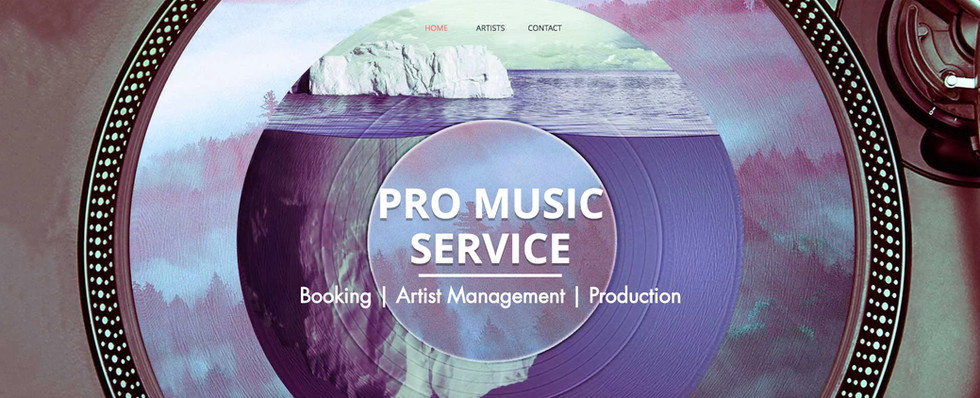 Pro Music Services