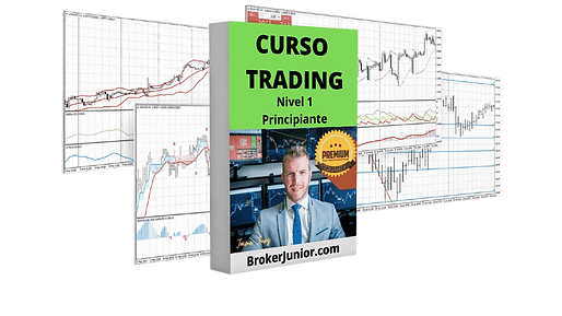 NIVEL 1 PREMIUM Curso Trading Principian